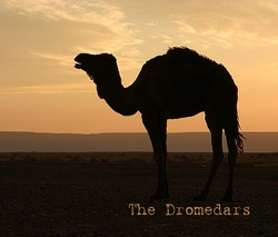 Profilový obrázek The Dromedars