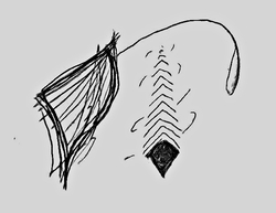 Profilový obrázek Cacodemonomania