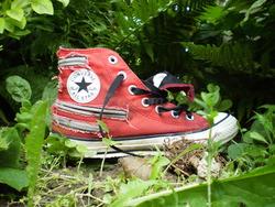 Profilový obrázek Túlavé topánky