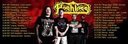 Profilový obrázek Fleshless