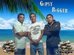 Profilový obrázek gipsy bigger