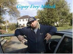 Profilový obrázek Gipsy Fery