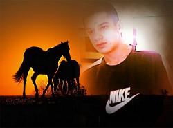 Profilový obrázek gipsy milanek