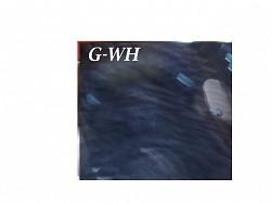 Profilový obrázek GWH