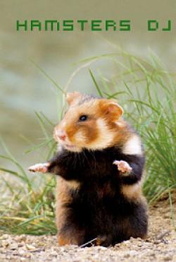 Profilový obrázek Hamsters DJs