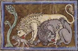 Profilový obrázek Hic sunt leones