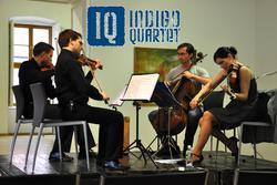 Profilový obrázek Indigo Quartet