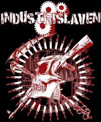 Profilový obrázek Industrislaven