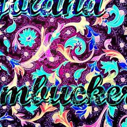 Profilový obrázek Jolana & Humbuckers