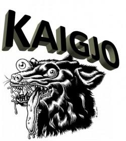 Profilový obrázek kaigjo