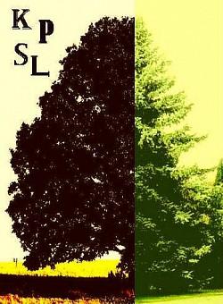 Profilový obrázek Klub přátel smíšených lesů