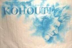 Profilový obrázek Kohouti 77
