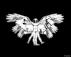 Profilový obrázek Kŕdeľ divých Adamov
