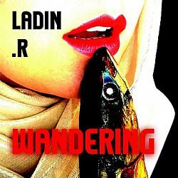 Profilový obrázek Ladin.R