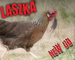 Profilový obrázek Laszka