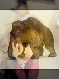 Profilový obrázek LuciJe_Mamut
