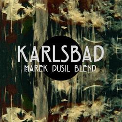 Profilový obrázek Marek Dusil Blend