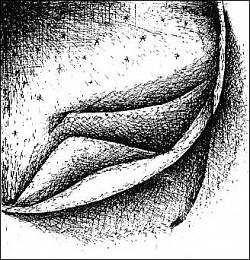 Profilový obrázek MAVI GAYET