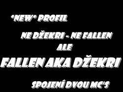 Profilový obrázek MC Fallen