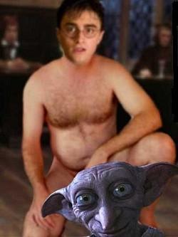 Profilový obrázek Harry Fotr