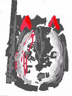 Profilový obrázek MOO