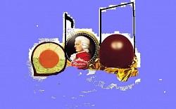 Profilový obrázek Mózartovy koule