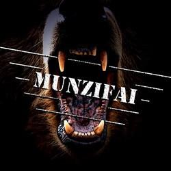 Profilový obrázek Munzifai