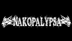 Profilový obrázek Nakopalypsa
