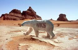 Profilový obrázek NKS (Nevíme kde sme)