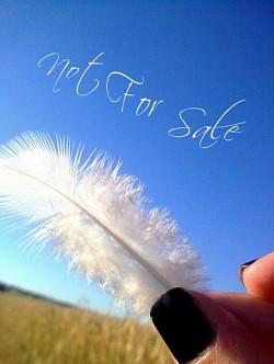 Profilový obrázek Not For Sale