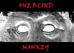 Profilový obrázek One Blind Monkey