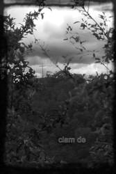 Profilový obrázek Clam de