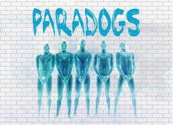 Profilový obrázek Paradogs