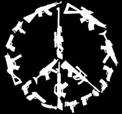 Profilový obrázek Peace Is Gun