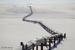 Profilový obrázek Pipeline