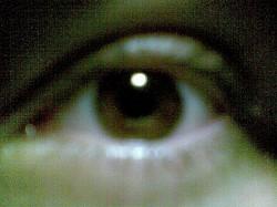 Profilový obrázek Pro.Wolfs3