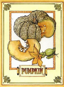 Profilový obrázek Pumpkin Punks