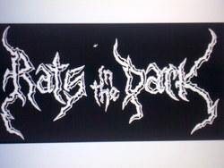 Profilový obrázek Rats in the dark