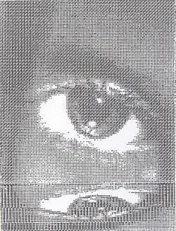 Profilový obrázek Rozpínání mysli