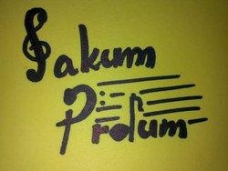 Profilový obrázek Sakum Prdum