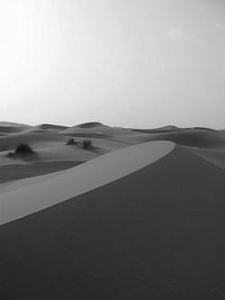 Profilový obrázek Sand