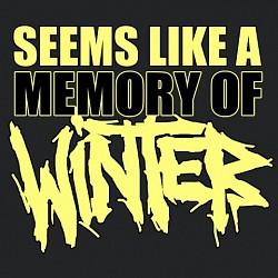 Profilový obrázek Seems Like A Memory Of Winter