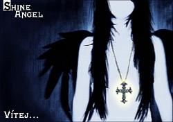 Profilový obrázek Shine Angel