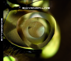 Profilový obrázek Shivanam