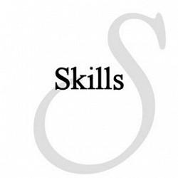 Profilový obrázek Skills