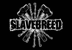 Profilový obrázek Slavebreed
