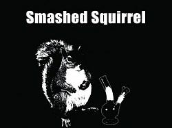 Profilový obrázek Smashed Squirrel