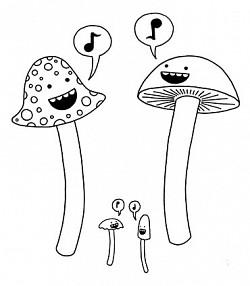 Profilový obrázek smushrooms