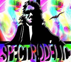 Profilový obrázek Spectrodelic Project
