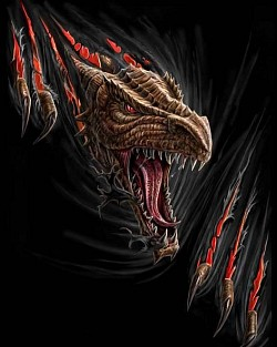Profilový obrázek Speed Monsters
